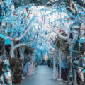 Frozen 2 Crystal Lane - The Grounds of Alexandria