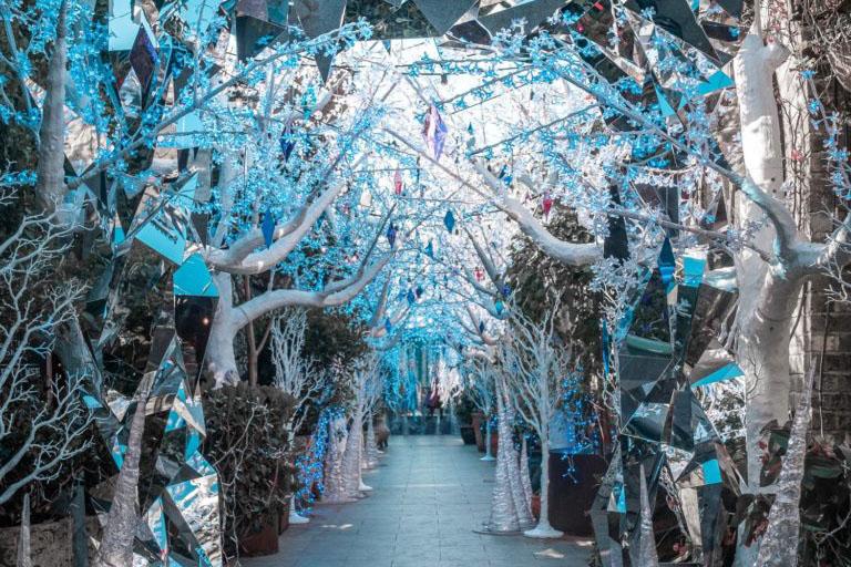 frozen-the-grounds-alexandria