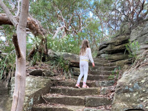 Balls Head Reserve - steps