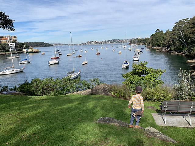 View of boats at Cremorne