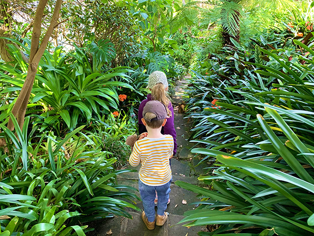 lex-ruby-garden-cremorne