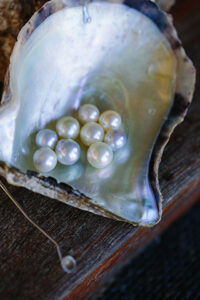 Pearls - Pearls of Australia, Broken Bay
