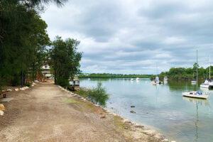 Walk way at Wangal Reserve