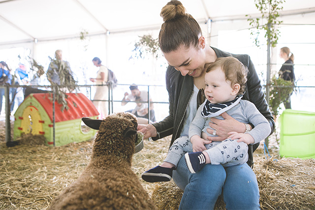 Sydney Family Show-Animal Nursery